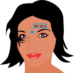 GV 24.5