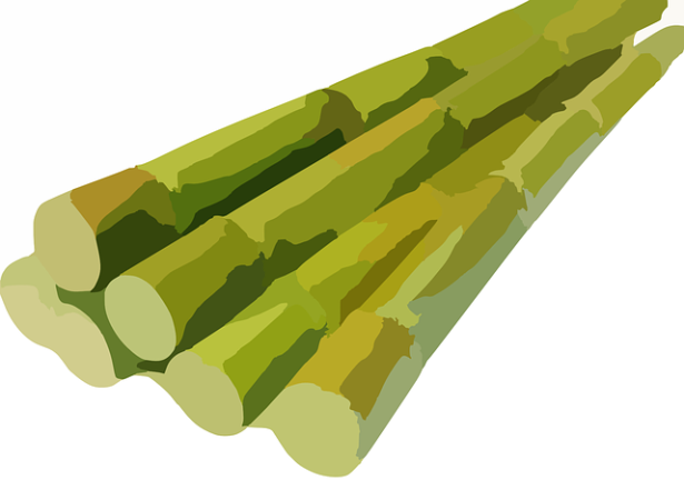 sugarcane-311914_640.png